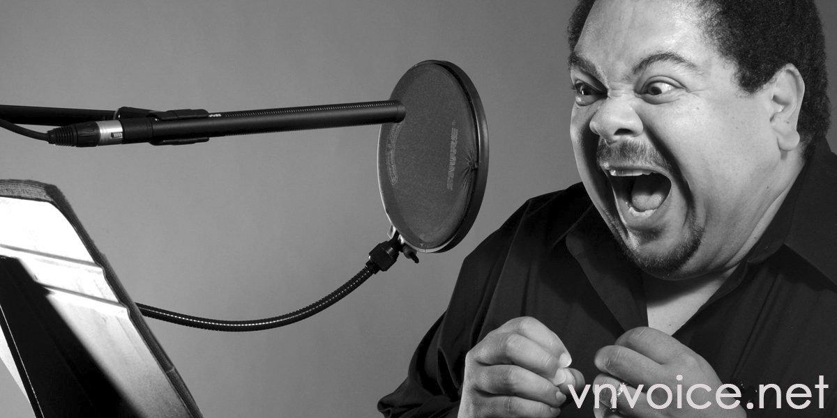 vietnamese voice artist, vietnamese voice over